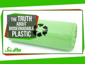truth_about_biodegradable_plastic